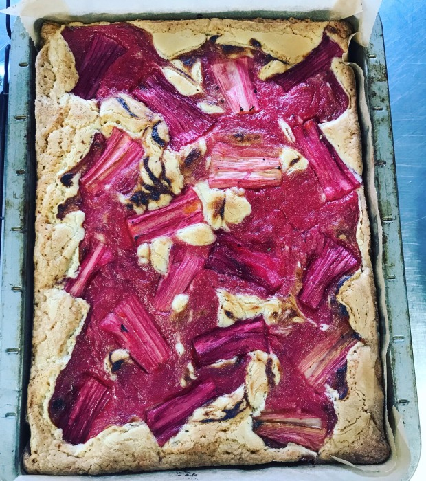 The Factory Kitchen white chocolate and rhubarb blondie